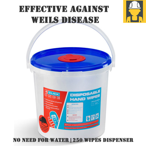 Hand Wipes Effective Against Weils Disease 250 Wipes